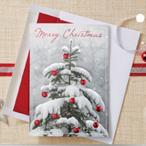 Christmas cards and thanksgiving cards with your logo. Order now.